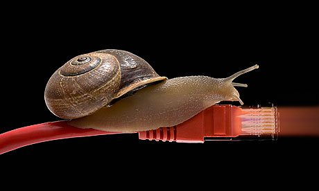 cable-snail-007.jpg