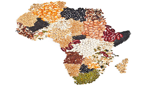Food-map-of-Africa-for-Apr-Last-Word.jpg